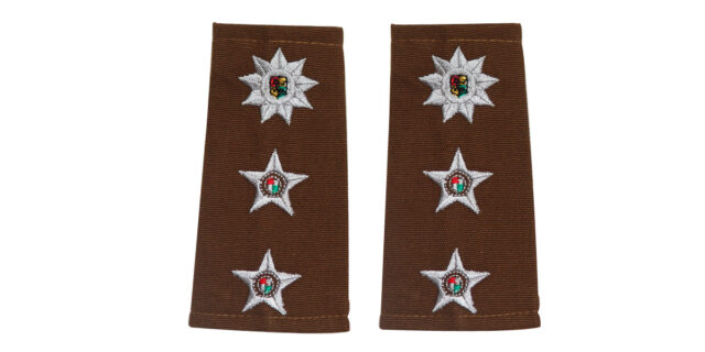 Epaulette (Pair) - Colonel - NEW